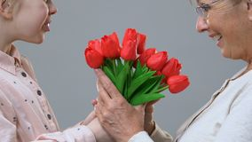 Cute girl giving tulips to granny, hugging and congratulating her on anniversary. Stock footage stock video footage