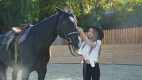 Cute girl in hat caresses black mare`s head on sunny background stock footage