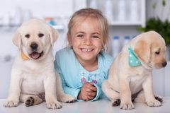 Cute girl with her labrador puppy dogs at the veterinary. Cute girl with her adorable labrador puppy dogs at the veterinary - group portrait with a broad smile stock photo