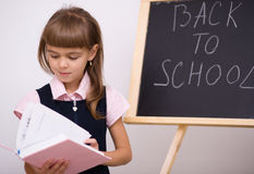 Cute girl is holding book. School concept Royalty Free Stock Photography
