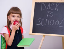 Cute girl is holding book. School concept Royalty Free Stock Images