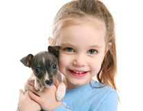 Cute girl holding a puppy. Portrait of an adorable young girl smiling holding a cute tiny rat terrier puppy Stock Photos