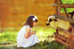 Cute girl, kid feeding lamb with grass, countryside Stock Photo