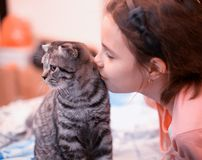 Cute girl kissing kitten Royalty Free Stock Photo