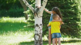 Cute girl with little brother having fun running around the tree outdoors at sunny day. Close up stock video footage