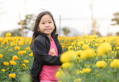 Cute girl in Marigold flower field Royalty Free Stock Images