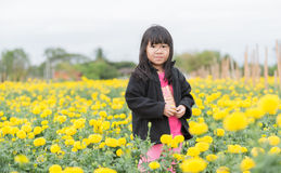 Cute girl in Marigold flower field Stock Photography