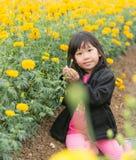 Cute girl in Marigold flower field Royalty Free Stock Image
