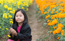 Cute girl in Marigold flower field Stock Image