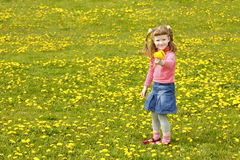 Cute girl on the meadow Royalty Free Stock Image