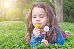 Cute girl in a meadow Stock Images
