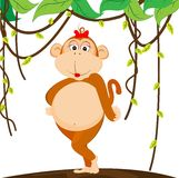Cute girl monkey Stock Image