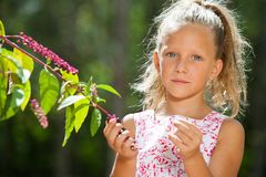 Cute girl outdoors picking berries. Stock Images