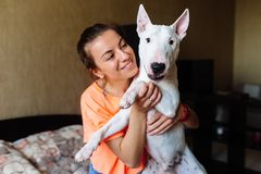 Cute girl petting her bull terrier .Beautiful girl having fun with her bull terrier and enjoying herself. Girl and her. Cute girl petting her dog.Beautiful girl royalty free stock photography