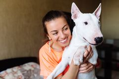Cute girl petting her bull terrier .Beautiful girl having fun with her bull terrier and enjoying herself. Girl and her. Cute girl petting her dog.Beautiful girl stock images