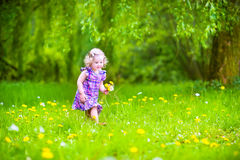 Cute girl playing with dandelions Stock Photos