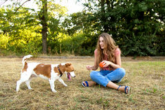 Cute girl is playing with her dog in the park. Young pet dog breeds beagle walking in park outdoors. woman carefully walks puppy, plays and trains, sits with pet royalty free stock photos