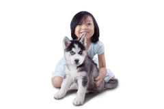 Cute girl plays with husky puppy on studio Royalty Free Stock Images