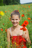 Cute girl in poppy field Royalty Free Stock Photo