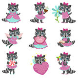 Cute Girl Raccoon Cartoon Set Stock Images