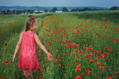 Cute girl in red dress walks at poppy field Stock Photography