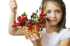 Cute girl with rose-ship basket Stock Photos