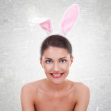 Cute girl in sexy bunny costume Royalty Free Stock Photos
