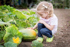 Cute girl sitting at the pumpkin Stock Photography