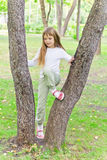 Cute girl in summer sit on tree Royalty Free Stock Image