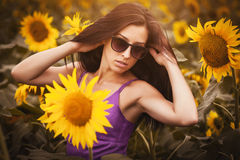 Cute girl in a sunflower's field Stock Photo
