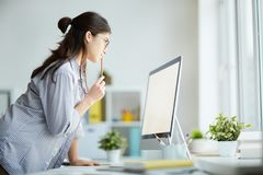 Cute Girl Using Computer. Side view portrait of contemporary young woman looking at computer screen biting pencil while working in office, copy space stock photos