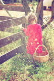 Cute girl walking in field with basket and warm sunset light. abstract and dreamy concept. image is textured and retro toned Stock Images