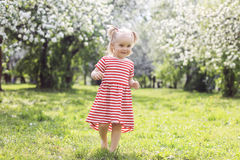 Cute girl walking in the park on a summer day. Little girl walking in the park on a summer day Royalty Free Stock Photo