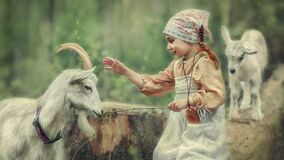 Cute girl wants to touch the goat`s horns
