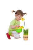 Cute girl watering flower Royalty Free Stock Photos