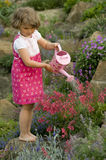 Cute girl watering flower in the garden Royalty Free Stock Image