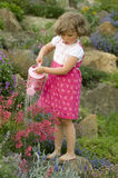 Cute girl watering flower in the garden Royalty Free Stock Photo