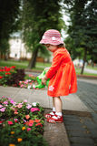 Cute girl watering flowers in the garden Stock Images