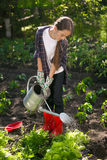 Cute girl watering garden with watering can at hot summer day Royalty Free Stock Photography