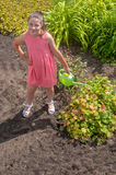 Cute girl watering plants Royalty Free Stock Images