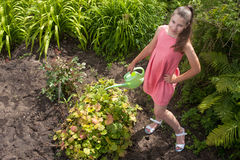 Cute girl watering plants Stock Images