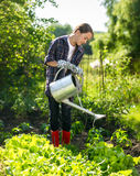 Cute girl watering plants in garden at hot sunny day Stock Photography