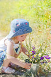 Cute girl with wildflowers. Cute little baby girl with a bouquet of wild flowers in a vase collects stock photos