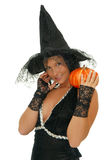 The pumpkin and witch Royalty Free Stock Photo