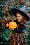 Cute girl of 8-9 years in a suit for Halloween with pumpkin and magic wand into hands. Royalty Free Stock Photos