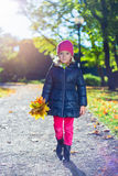 Cute girl with yellow maple leaves walking in park Royalty Free Stock Image