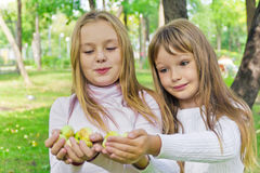Cute girls with apples Royalty Free Stock Images