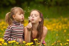 Cute girls blowing dandelion seeds away. Stock Photos