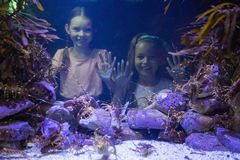 Cute girls looking at fish tank Royalty Free Stock Image