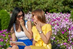 Cute girls with tablet computer Royalty Free Stock Photo
